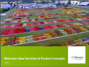 каталог семян цветов на 2021 год